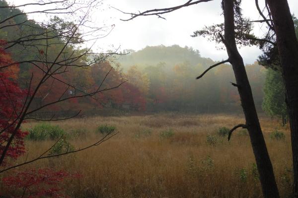 タカドヤ湿地-修正版-066